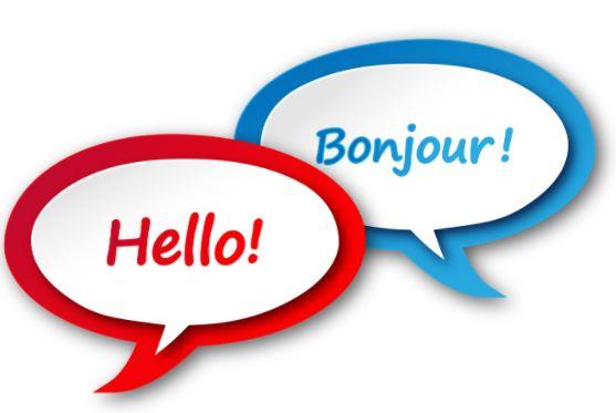 Translator and Interpreter (Arabic, English, French vv.)