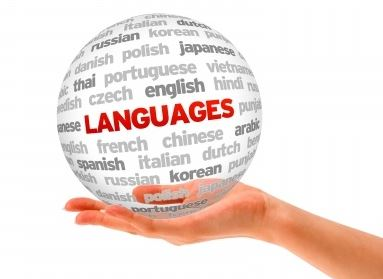 Interpreter and Translator (Korean, English, French & Arabic)